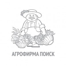 Петрушка Итальянский гигант (ЧБ)(увеличенный размер) 3гр.