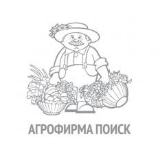 Шпинат Матадор (ЧБ) (ув,размер) 3 гр.