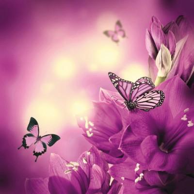 Фотообои на флизелине DECOCODE Фиолетовые бабочки 22-0038-FV (200*200см)