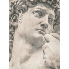 Фотообои Скульптура DECOCODE 21-0438-НН (200х280 см)