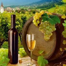 Декоративное панно VIP Виноградная долина 196х134 (4л)