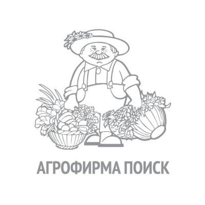 Сельдерей листовой Бодрость(А) (ЧБ) (ув,размер) 0,5 г